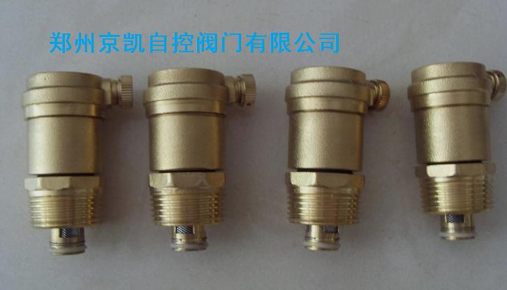 zp88黄铜自动排气阀图片