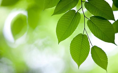 环保标准 十三五 发展规划印发 明确五大具体指标图片