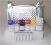 小鼠补体3裂解产物(C3SP)ELISA试剂盒