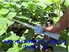 中西(LQS)植物冠层测量仪 型号:M401497库号:M401497